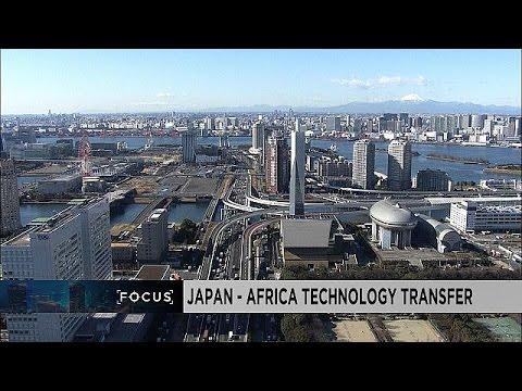 Focus : le Japon, porteur d'un nouveau modèle de coopération pour l'Afrique