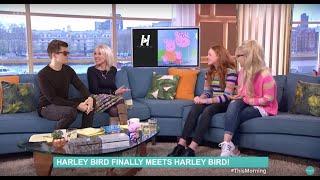 Harley Bird Finally Meets Harley Bird!
