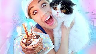 THROWING MY CAT A BIRTHDAY PARTY!