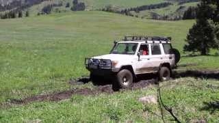 Toyota Land Cruiser 76 and UAZ. Nissan Patol. 4x4. Off road. Extreme.  Джипы и болото. Казахстан.