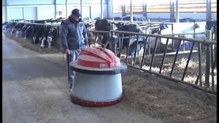Hodowla krów mlecznych w Nowych Jankowicach
