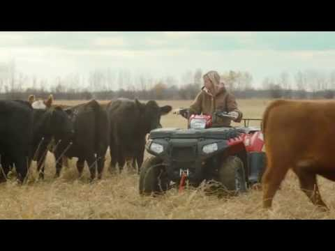 100% Real Beef: A Company Or A Fact? Mcdonald's Canada