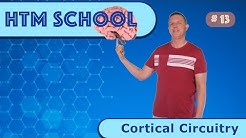 Cortical Circuitry (Episode 13)