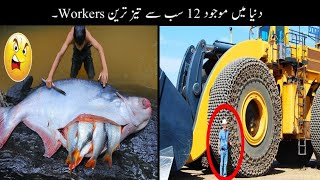 12 Most Fast Workers In The World Urdu    دنیا کے سب سے تیز ترین ورکرز    Haider Tv