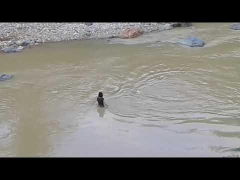 Putri duyung sungai grindulu