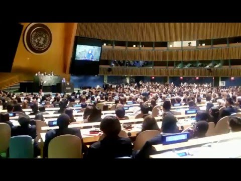 Inside the United Nations General Assembly