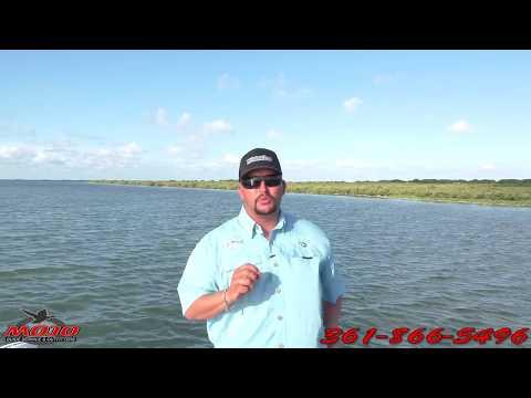 Corpus christi tx fishing guide duck hunting guide 361 for Corpus christi fishing guides