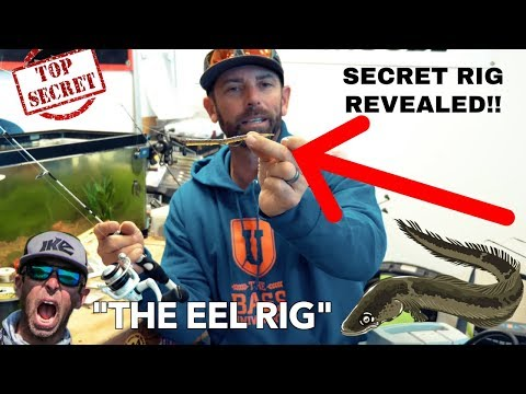 THE EEL RIG! TOP SECRET BASS BAIT!!