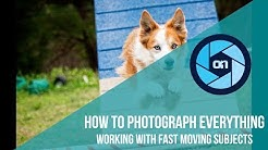 Working with Fast Moving Subjects – How To Photograph Everything