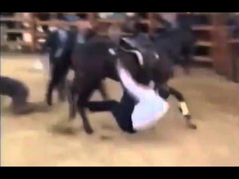 Картинки по запросу Рамзан Кадыров упал с лошади и сломал шею. Состояние тяжелое