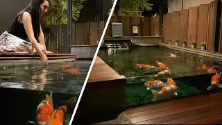 Amazing Koi Villa & Koi Pond Collection **TOUR**