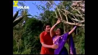 Savasagallu Movie Songs | Aananda Aanandamaaye Video Song | Superstar Krishna | Suresh Productions