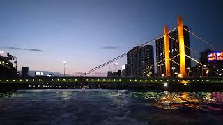 東京水辺ライン ナイトクルーズ新大橋
