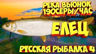 русская рыбалка 4 Елец река Вьюнок рр4 фарм Алексей Майоров russian fishing 4