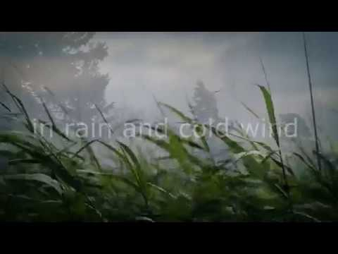 CULT OF A LIE - IN RAIN AND COLD WIND  (OFFICIAL VIDEO)