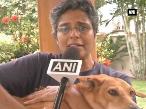 Two dogs from Coimbatore selected for PETA's 'Cutest Indian Dog Alive'  contest