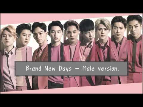 [EXOPINK] Brand New Days - Male version.