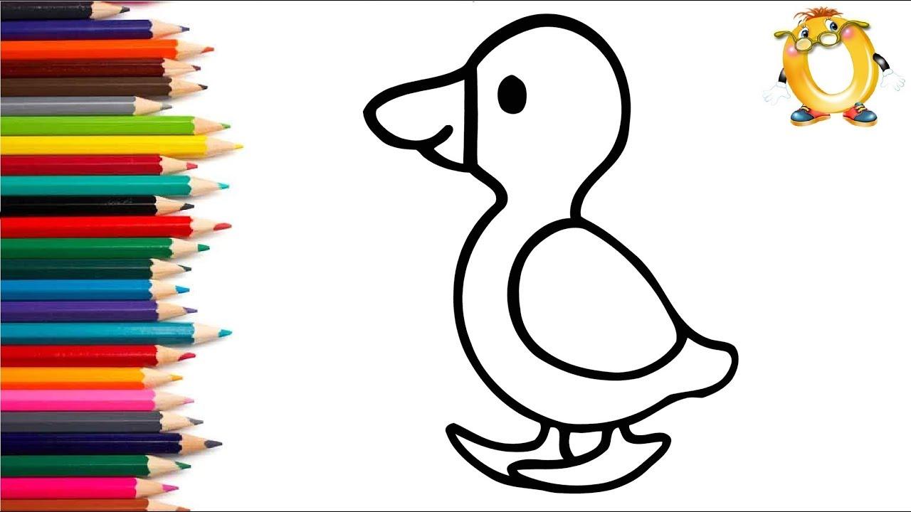 раскраска для детей утёнок мультик раскраска учим цвета