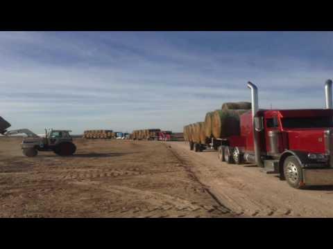 Nebraska Strong Disaster Relief