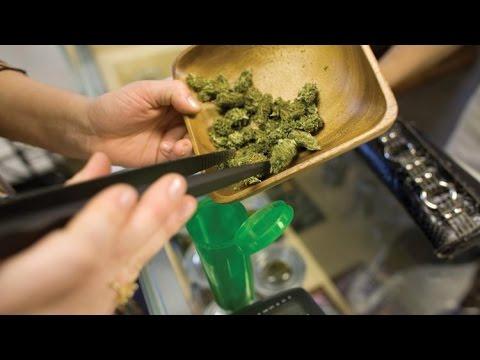 Marijuana News – Trulieve Florida Home Delivery – Potshotz Flavorless Marijuana Mixer