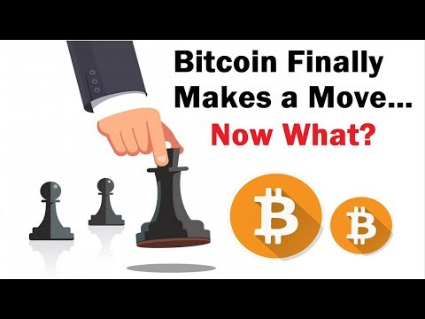 Bitcoin Finally Makes A Move and Amazon's Reversal Signal