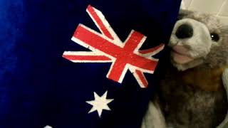 Happy Australia Day From Baby Bats And Buddies Of Australia .