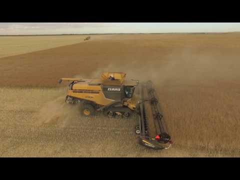 Millhouse Farms Harvest 2016