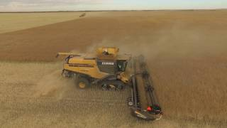 Millhouse Farms Harvest 2016