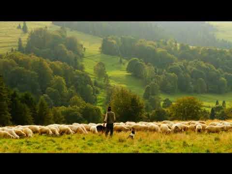 Ps 22 Le Seigneur est mon berger