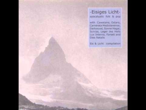 Various - Eisiges Licht