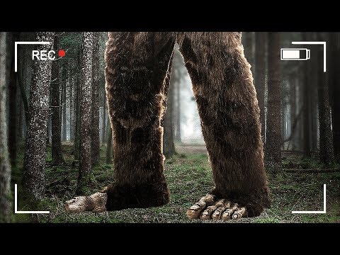 FINDING BIGFOOT 2.0!! (Finding Bigfoot Game)