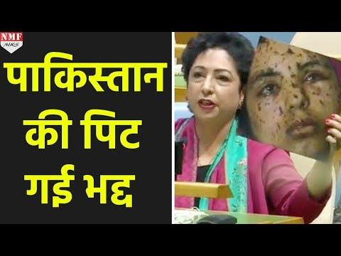 UN में Pakistan ने Kashmir की गलत Picture दिखाई, अब हो रही है बेइज्जती
