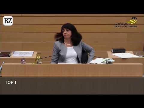 Polizeieinsatz Im Stuttgarter Landtag | Stefan Räpple (AfD) Wird Rausgeworfen