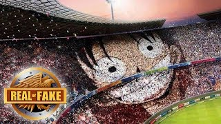 WORLDS BIGGEST LUFFY PICTURE - real or fake?
