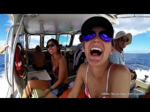 The Best of Hawaii - Maui, Kauai, Big Island & Oahu   4k  (Justin Bieber Sorry Havai)