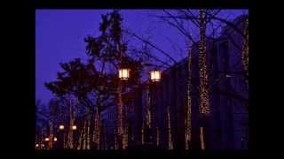 「街角トワイライト」は、1981(昭和56)年2月1日に発売されたシャネル...