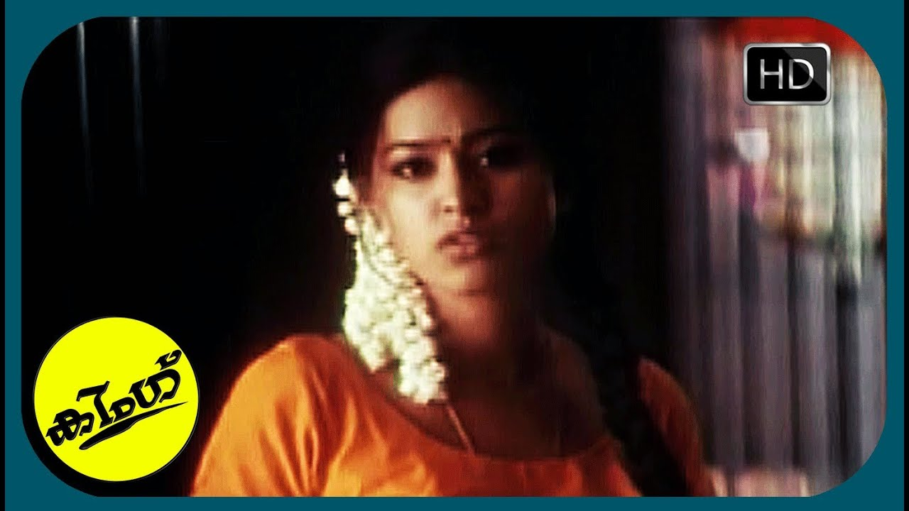 Download Malayalam Movie Scene | King | She Is Not Living Like a Servant Here..!