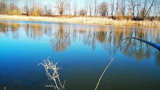 КАРАСЬ НА ПОПЛАВОЧНУЮ УДОЧКУ РАННЕЙ ВЕСНОЙ Ловим карася на диком озере