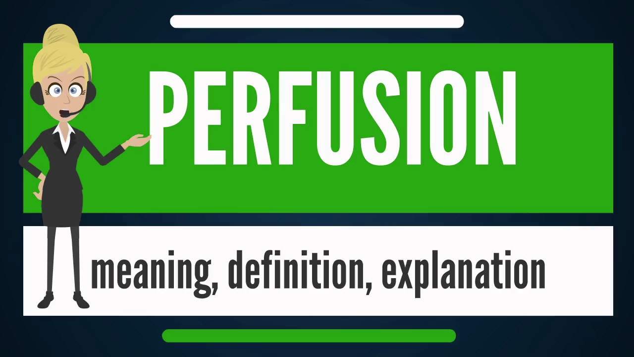 What is PERFUSION? What does PERFUSION mean? PERFUSION ...