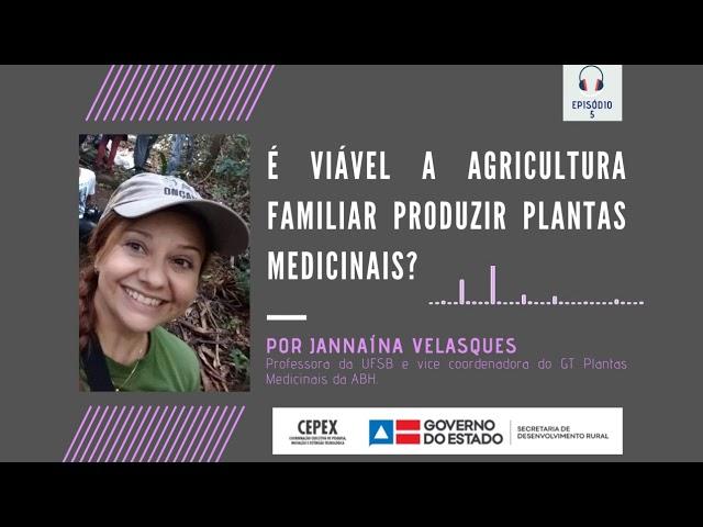 #SDRpergunta - Plantas Medicinais