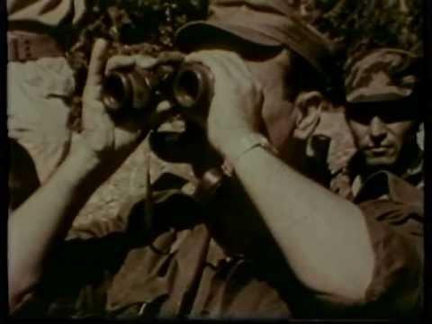 30 שנה למלחמת שלום הגליל: תיעוד מיוחד