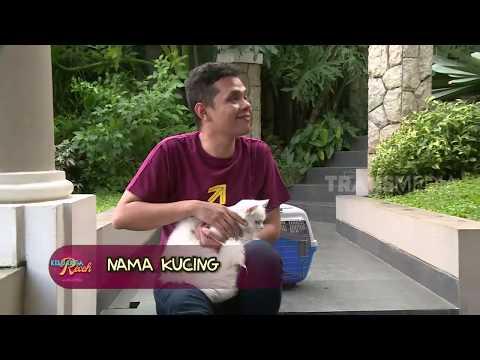 NAMA KUCING | KELUARGA RECEH (20/04/19)