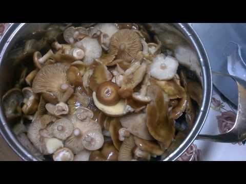 Маринованные  опята  грибы на зиму - Рецепт.  Очень ВКУСНЫЙ МАРИНАД для грибов !!!
