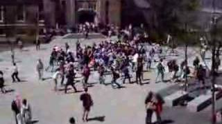 Pirate Flash Mob - Cornell University