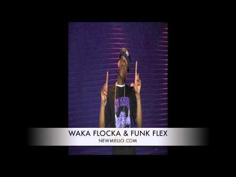 FUNK FLEX & WAKA FLOCKA INTERVIEW ON STEPHEN HILL FROM BET