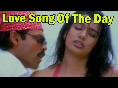 Love Song Of The Day 50