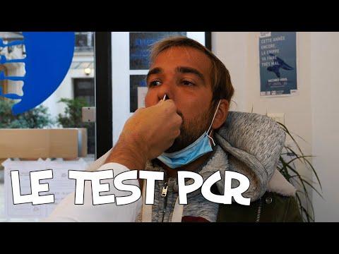 Download Le test PCR