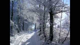 mont gargan sous la neige.wmv