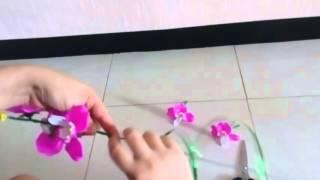 Tutorial merangkai bunga anggrek akrilik by Rayina Craft bag.2