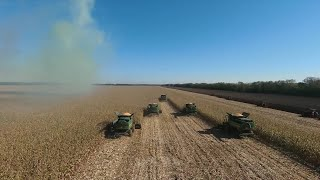 GLOBALink | Machinery helps with autumn harvest in Heilongjiang, China